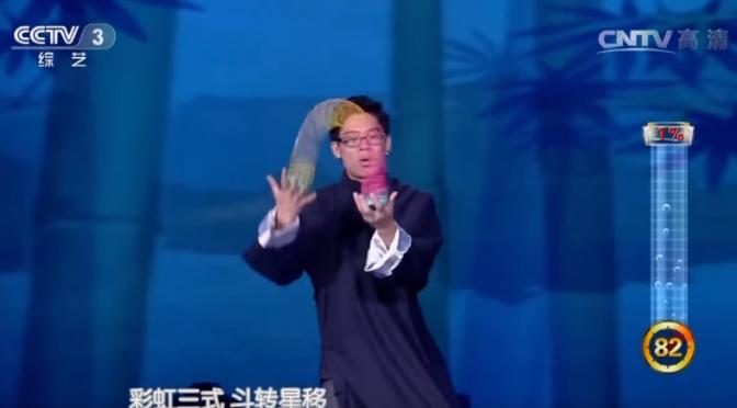 Slinky Kung Fu versus Tai Chi Roboto…